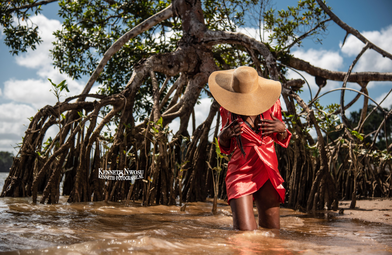 Mangrove shoot 2 Suriname